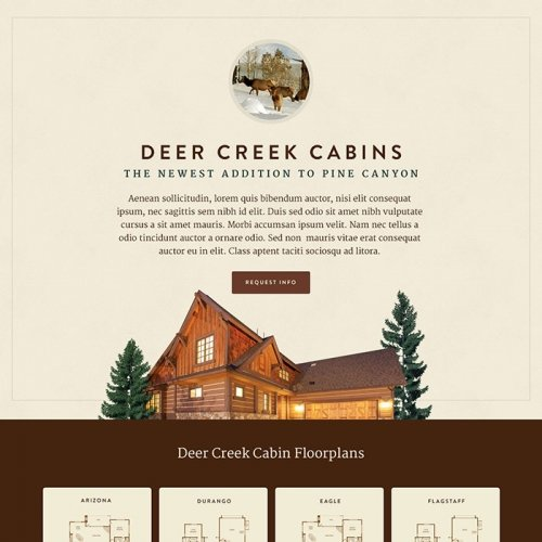 Pine Canyon - Website Design